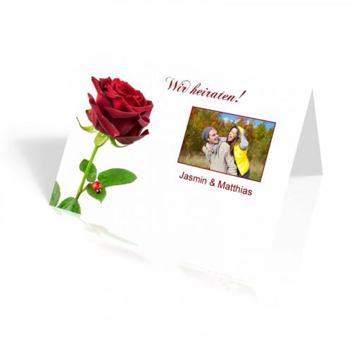 Rote Rose - vertikal klappbar